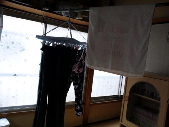 洗濯物&顔5・12 012