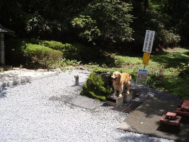 富士山弁当場 003