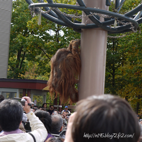 091011-asahikawa-04.jpg