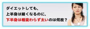 tasyounokouka_03.jpg