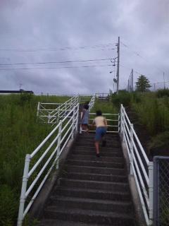 階段のぼれ~