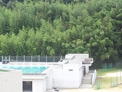 中学 プール