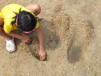 掘る 掘る