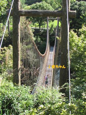 ワンパク橋