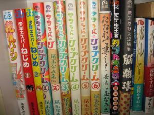 イマイチパッとしなくて読んでることを友達に知られたくない漫画が並ぶ本棚