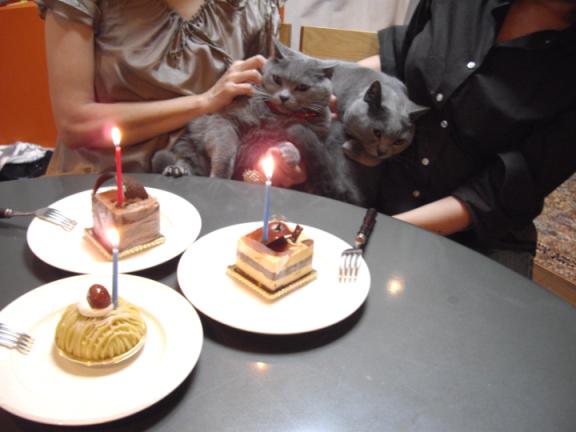 3ケーキなビズビアン