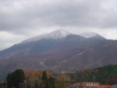初雪1197