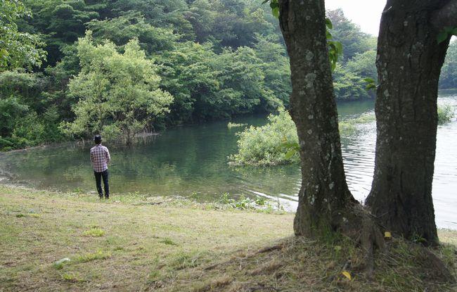 池田池の菖蒲園4