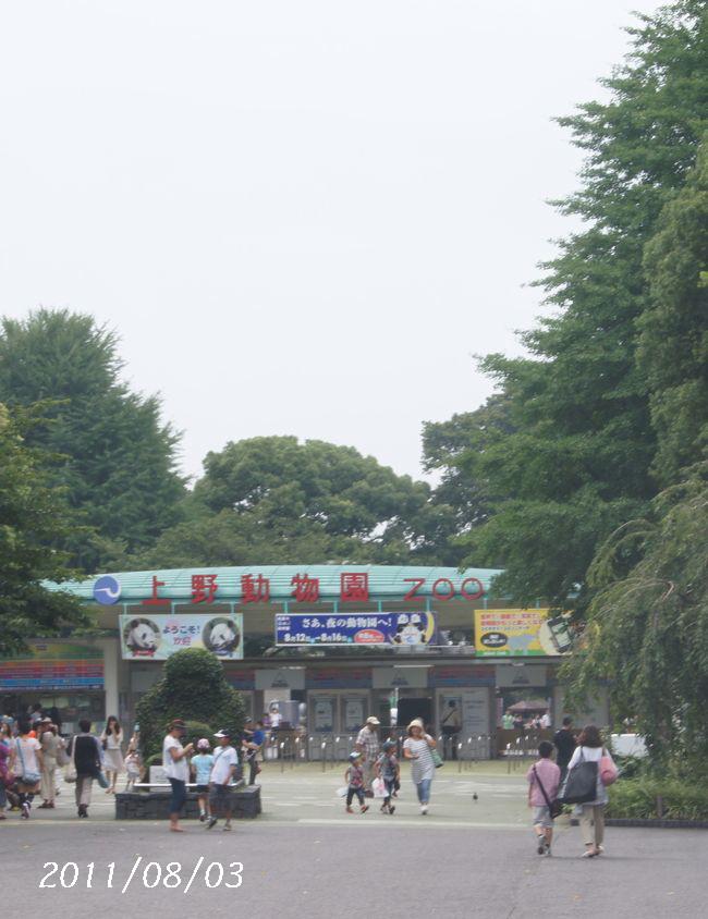 8.3上野へ4