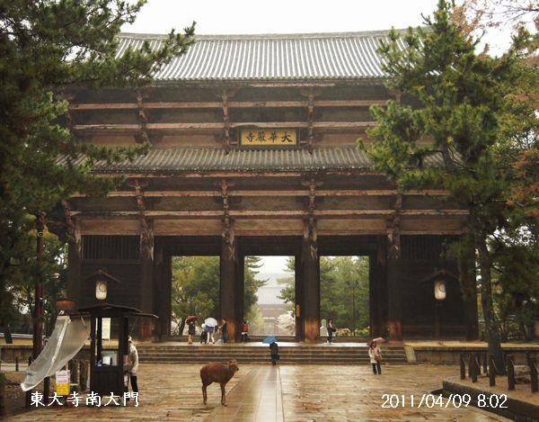 4,9奈良S 016