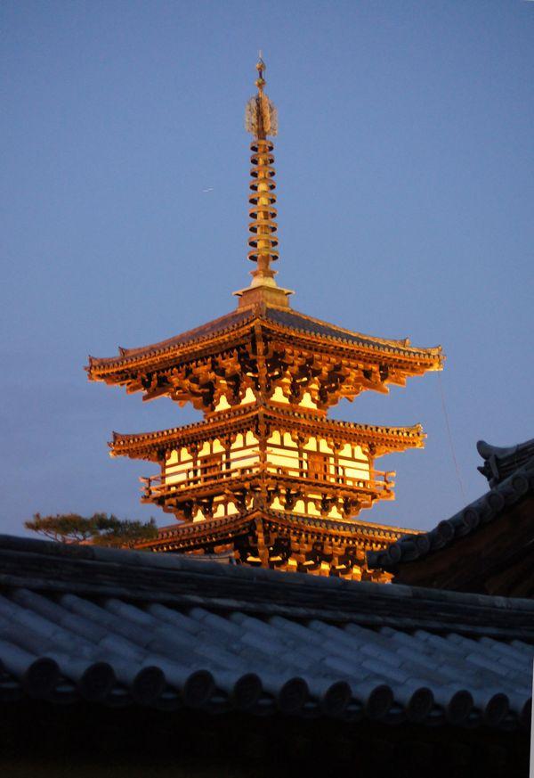 薬師寺ライトアップ1