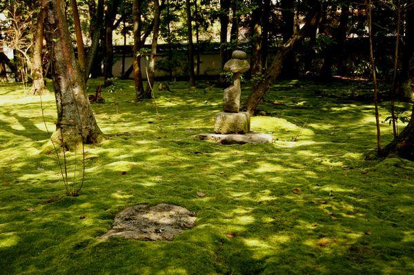 金堂跡庭園3