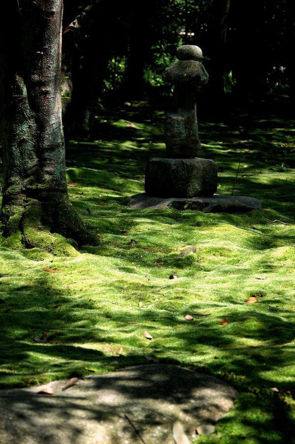 金堂跡庭園2
