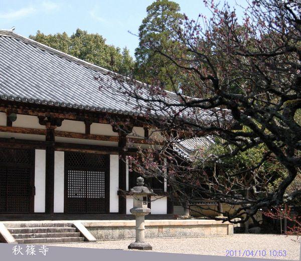 秋篠寺本堂2