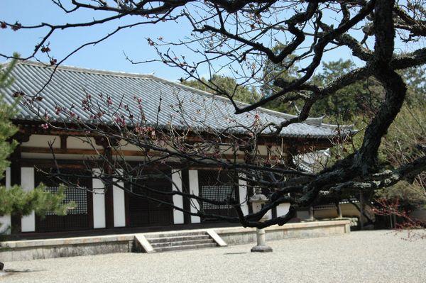 秋篠寺本堂3