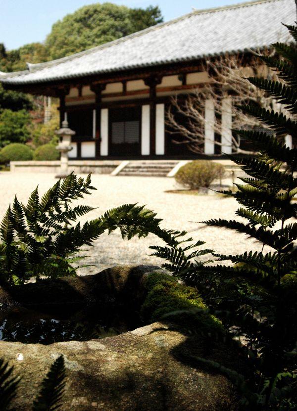秋篠寺本堂5