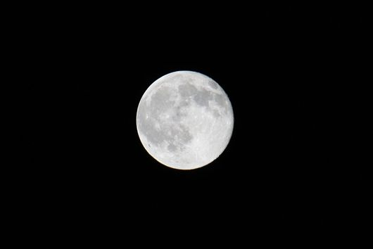 ブルーツ波が満月になると1700万ゼノという数値を超えるのだ……
