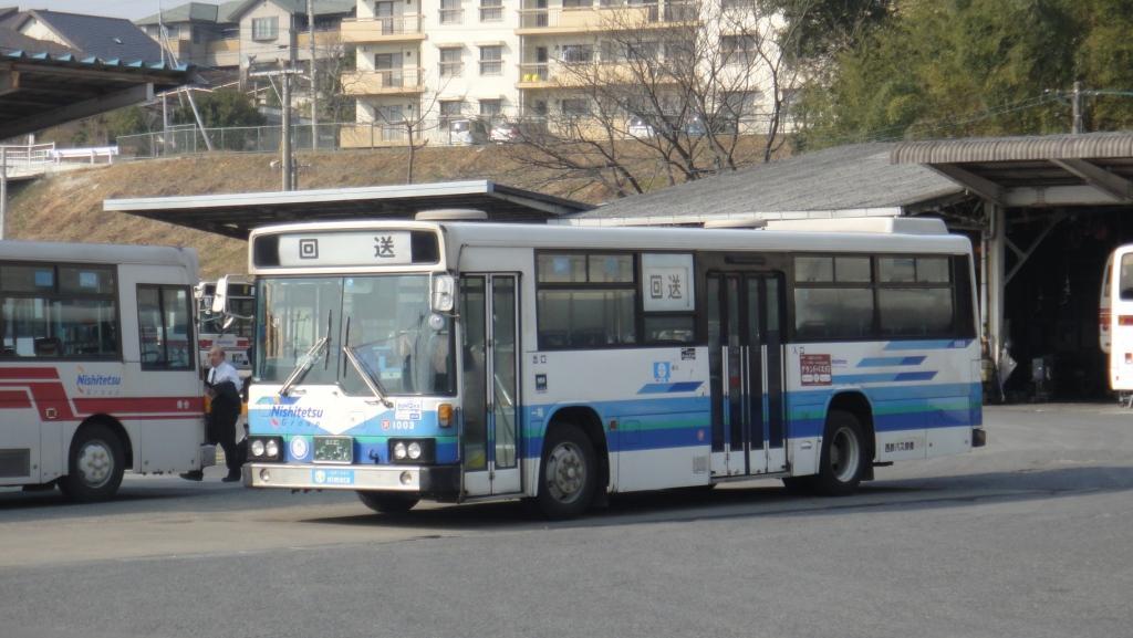 DSC01302b.jpg