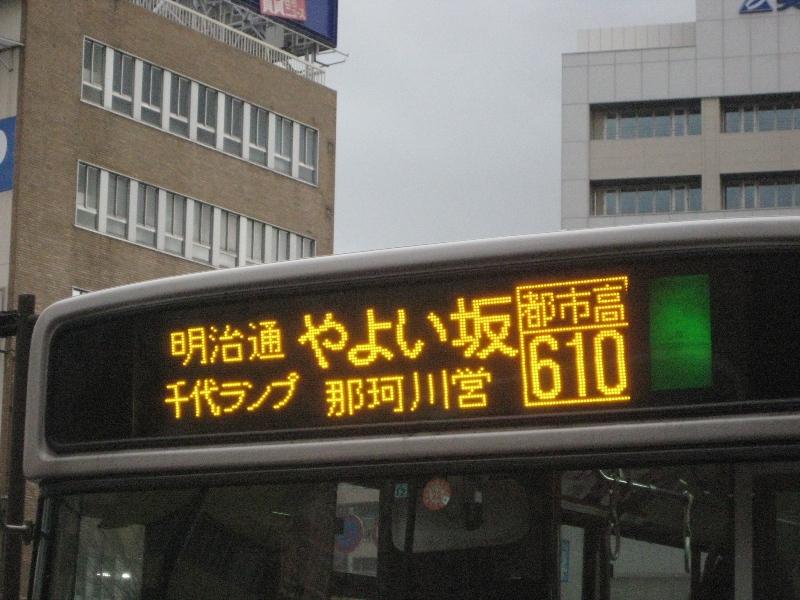 IMG_4010b.jpg