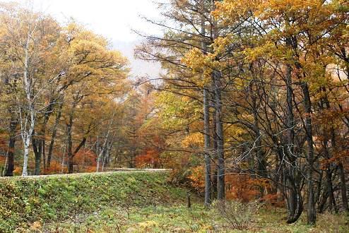 2009-10-31-22.jpg