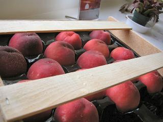 Fukushima Peach