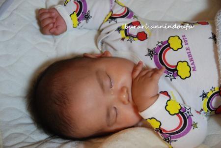 012_convert_20110525201427.jpg