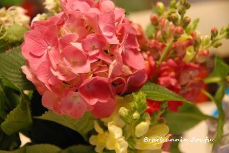 018_convert_20110615101313.jpg
