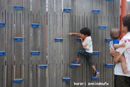 112_convert_20111012115504.jpg