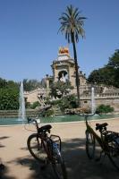 1 自転車 公園
