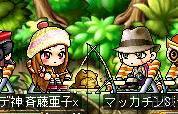 Maple8038a.jpg