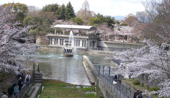 京都疎水噴水
