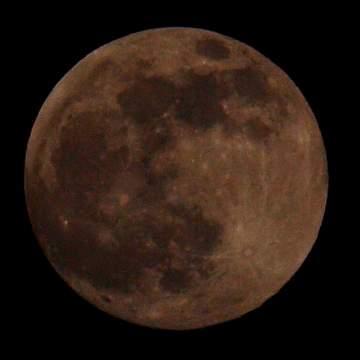 1262266989-2009 12 31 今夜の月.jpg