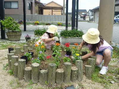 お花を植える