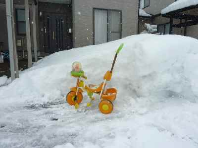 雪まみれ02