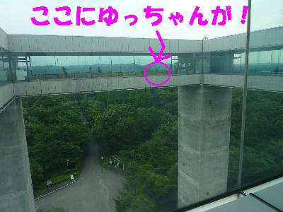 太閤山ランド03