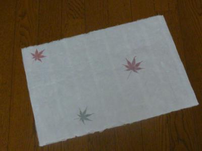 ナオ 漉き紙