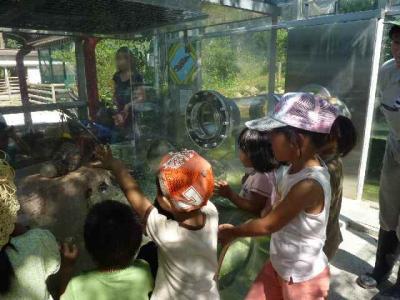 動物園06