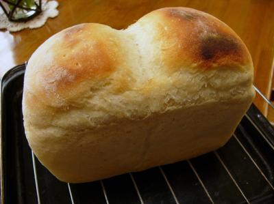 食パン_convert_20110919185749
