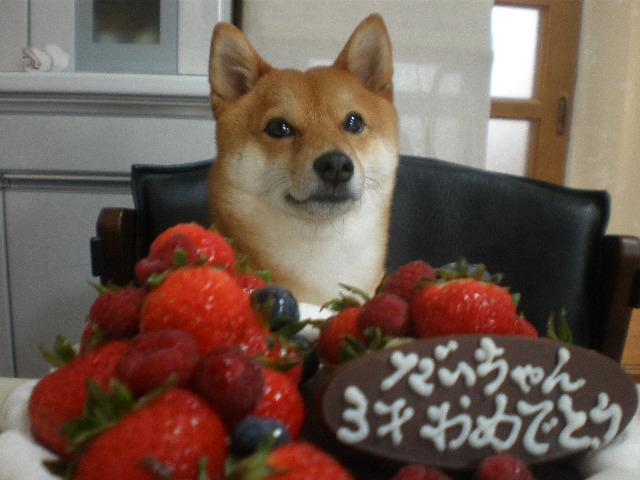 食べれんケーキと