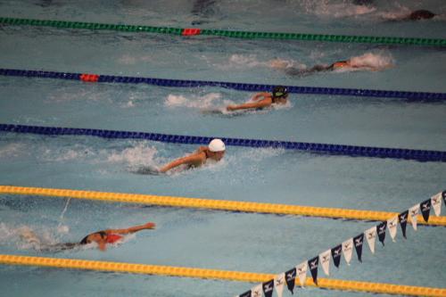 09夏水泳3