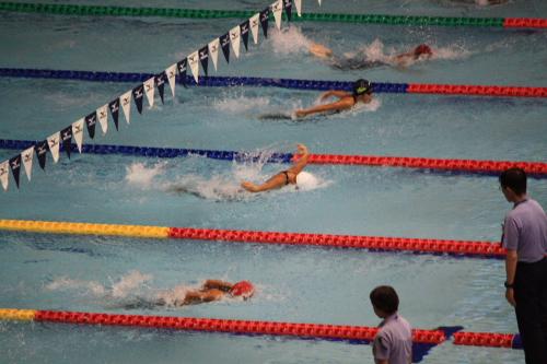 09夏水泳4