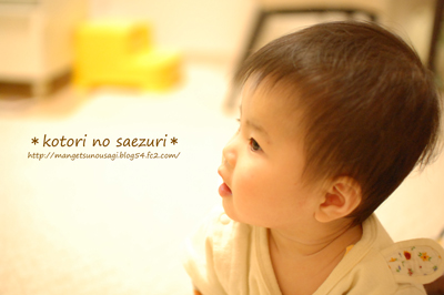 DSC_0057-1_20110225021025.jpg