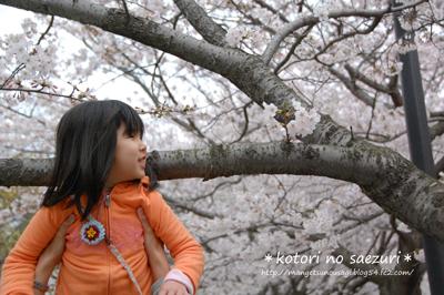 DSC_0064-1_20110426154013.jpg