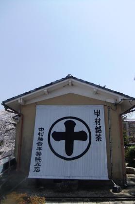 2011_04130049.jpg