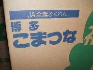 小松菜-箱