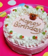 bd09_cake-197x231.jpg