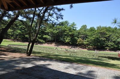 MIYAZAKI0044.jpg
