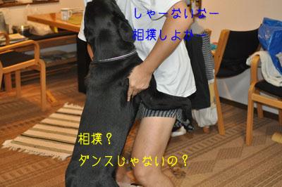 b_20090907DSC_0014.jpg