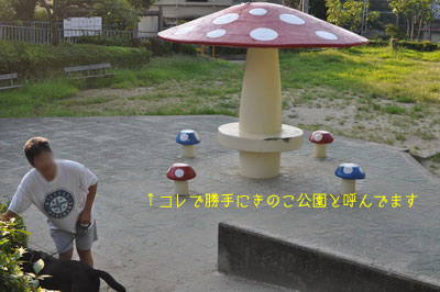 b_DSC_0061.jpg