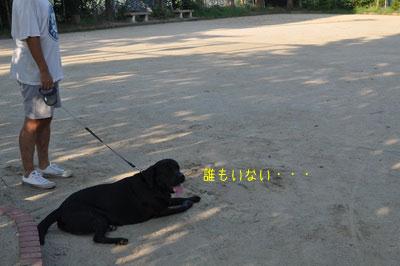 b_DSC_0062.jpg